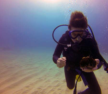 Scuba Diver holding a Sea Urchin underwater