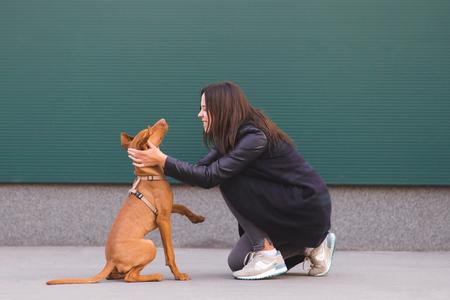 Portrait d'un heureux propriétaire avec un chien sur le fond du mur. Une fille heureuse jouant avec un chien sur un fond sombre. Loisirs avec un animal de compagnie. Banque d'images