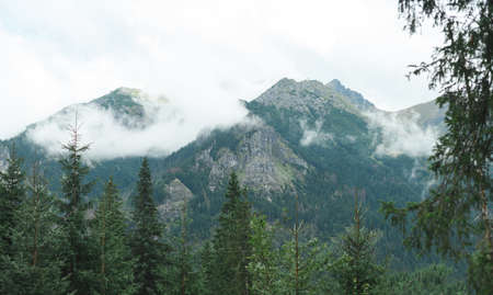Tatra Mountains, in southern Poland. Mountain rocky landscape and coniferous forest. View on the way to Morskie Oko. Landscape. Background Wallpaper. Фото со стока