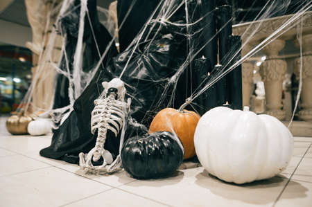 Halloween decor. Dog skeleton and colored pumpkins in a spider web. Фото со стока