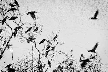 Imaginary winter scene montage 版權商用圖片