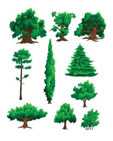 Ensemble d'illustrations en couleur d'arbres Banque d'images - 91757641