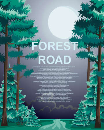 A forest road with coniferous trees along the edges Vector illustration.