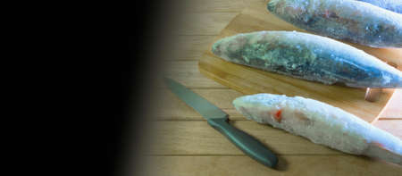 Frozen raw oceanic meaty fish