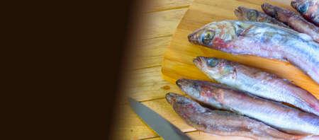 Fresh sea nutritious fish, carcass