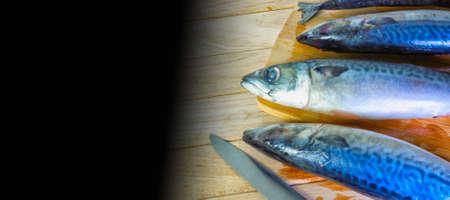 Delicious carcass of fresh sea fish Stock Photo