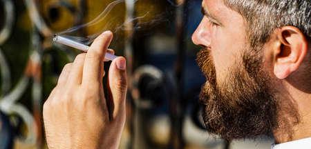 Bearded man with cigar. Beard man and mustache smoke cigar. Smoldering cigars. Smoking male, smoke cigar. Smoking man with beard. Young hipster man smokes
