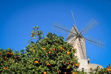 City Views of Palma de Mallorca taken from public places Imagens