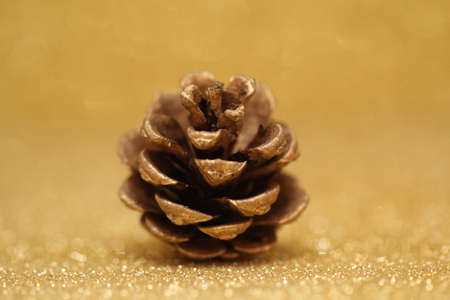 Pine cones with glitter background