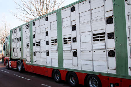 this is a modern livestock transporter Foto de archivo