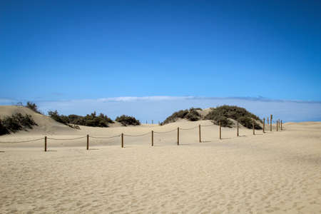 A desert with dunes and a lot of sand