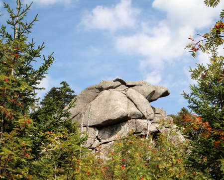 Rock formation in the Harz mountains