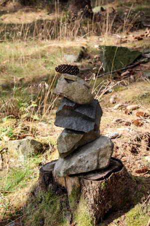 Stones as a pyramid stumped on a tree
