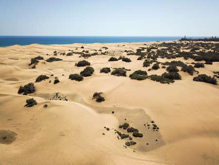 desert withered earth sand 版權商用圖片