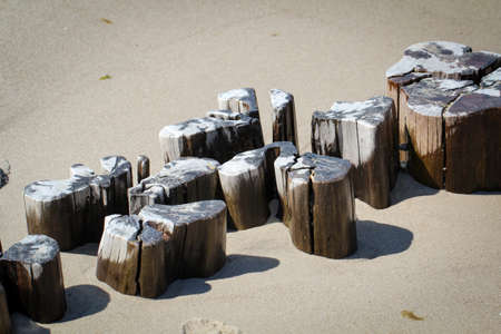Wooden piles (groynes) that rise from the sands of the Baltic sea protect the beach and the coast Standard-Bild - 122879126