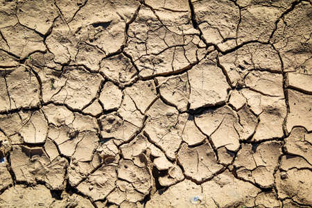 Dry earth due to lack of water, triggered by the beginning of climate change
