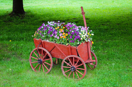 An old wooden cart, decorated with flowers