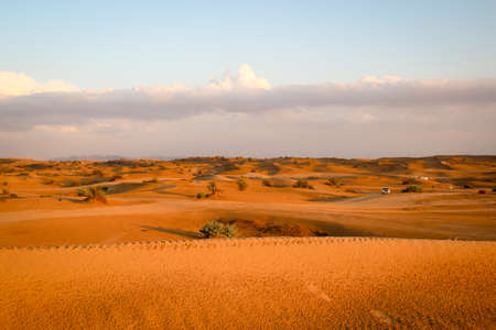 View of a desert landscape in the evening sun