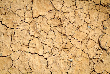 Cracked earth, cracked soil. Texture of grungy dry cracking parched earth. Global warming effect. Try Erth.