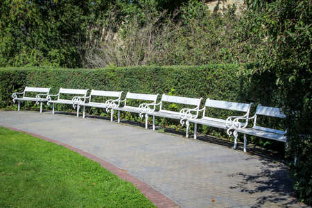 Many empty white park benches stood in a row in the park.