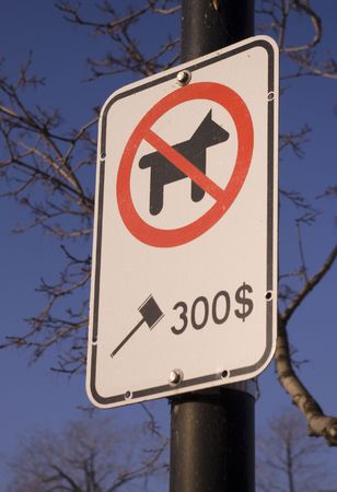 no dog sign in park sunny day against blue sky dollar fine american city