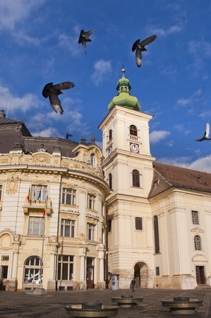 arhitecture: main square and catholic church historical arhitecture in Sibiu Romania with pigeons flying in the air