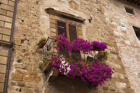 Petunia balcony in Tuscany town in summer