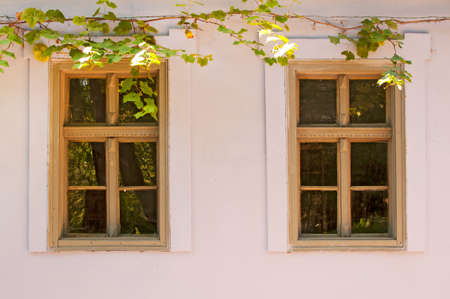 twin house: Twin wooden windows on old house with grapevine in autumn light