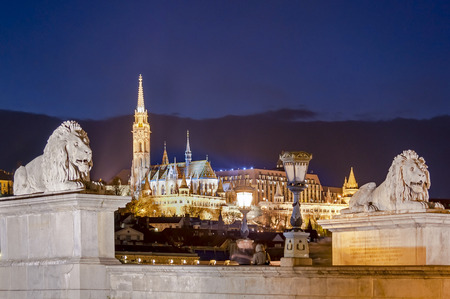 szechenyi: Stone lion of the Szechenyi Chain Bridge and Church of Mathias by night in Budapest