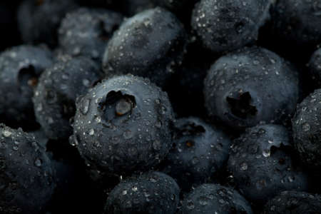 Blueberries Fruit Closeup Isolated on White Background