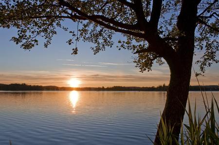 lake sunset: Sonnenuntergang an einem kleinen See n�he Bodensee ### Sunset at a small lake near Lake Constance Stock Photo