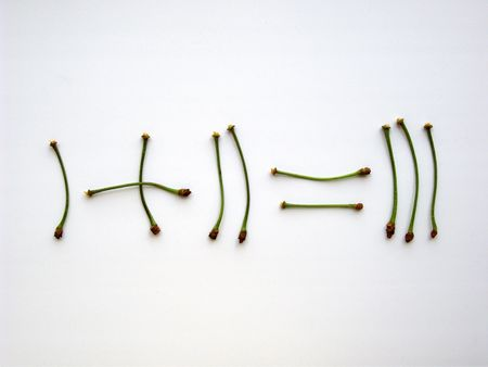 equals: Mathematics - Arithmetic. Addition with cherry stalks. One plus two equals three, isolated on white. (stock photo)