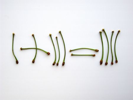 equals: Mathematics - Arithmetic. Addition with cherry stalks, isolated on white. One plus three equals four. (stock photo)