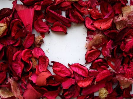 Dried red and garnet red plants and leaves forming a white heart in the middle. (stock photo)