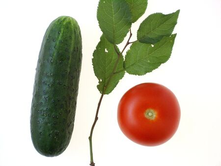 Vegetables: green cucumber, red tomato and a wax cherry tree twig with green leaves, on white. (stock photo)