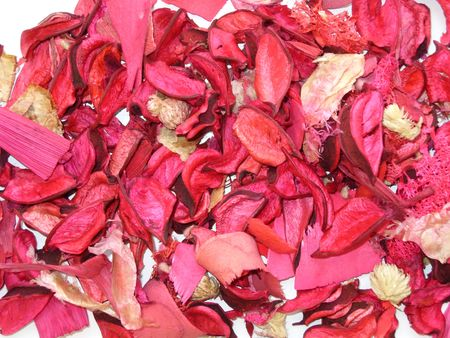 Coloured dried plants for decoration.