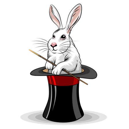 Illustration of rabbit in magic hat drawn in cartoon style