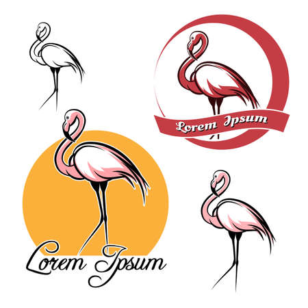 wildlife shooting: Flamingo logo and icon set. isolated on white background.