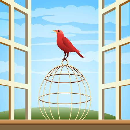 songbird: Songbird sitting on a cage in open window. Illustration