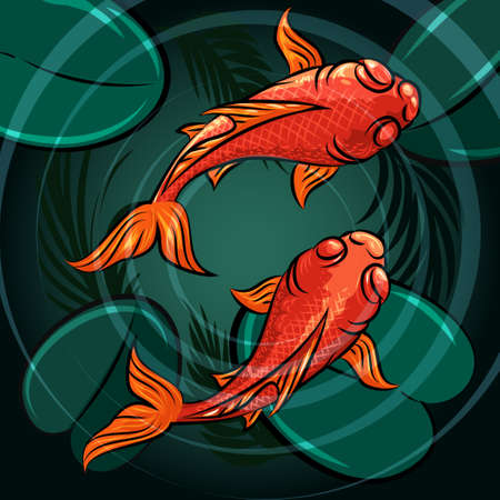 Pair of coi fishes in a pond drawn in cartoon style. Vector