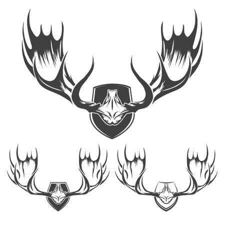 taxidermy: Moose or elk horns. Engraving style. Monochrome isolated on white.