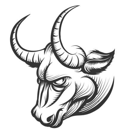 toro: Cabeza de toro furioso. Ilustración de estilo de grabado. Aislado en blanco.