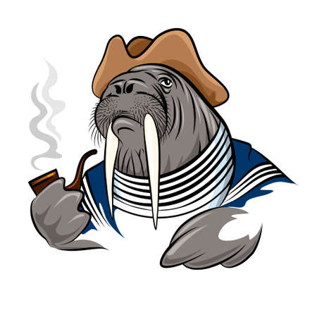 smoking pipe: Walrus in seamans clothes with smoking pipe. Illustration in cartoon style.