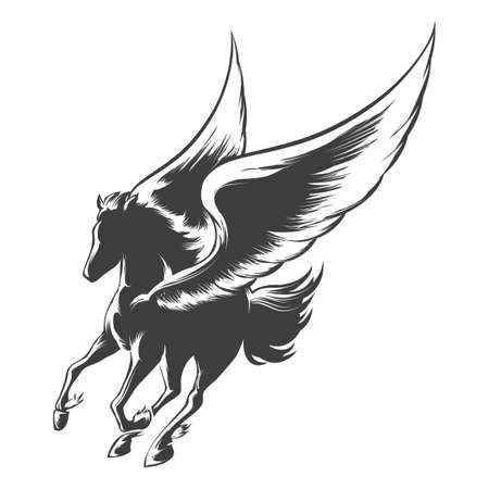 pegasus: Winged horse Pegasus. Illustration in engraving style.