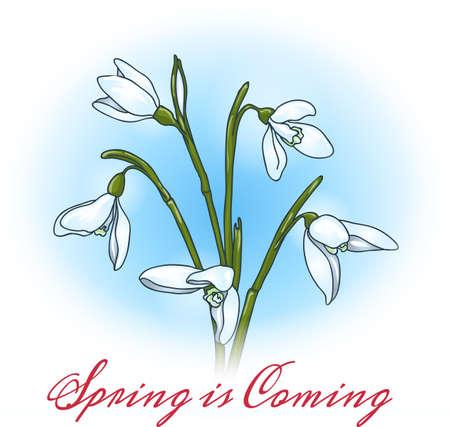 Eerste de lentebloemen sneeuwklokjes met belettering De lente komt eraan. Gratis lettertype gebruikt.