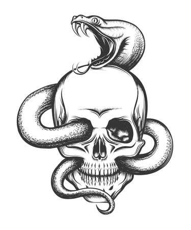 Human skull with crawling snake. Illustration in engraving style. Zdjęcie Seryjne - 59776350