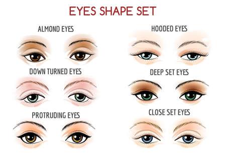 protruding eyes: Set of Eyes shape. Different shapes - close set, wide set, protruding on white background. Vector illustration.