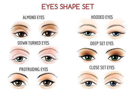 Set of Eyes shape. Different shapes - close set, wide set, protruding on white background. Vector illustration.