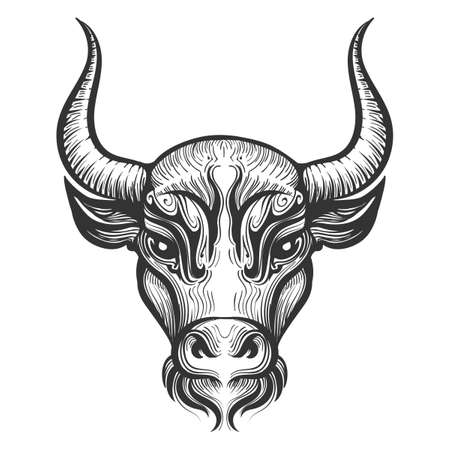 Bull Head engraving illustration. Signs of the zodiac.Taurus astrological sign. Vector illustration isolated on a white background.