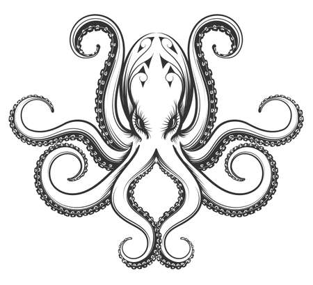 Octopus drawn in engraving vintage style. Vector illustration isolated on white background.